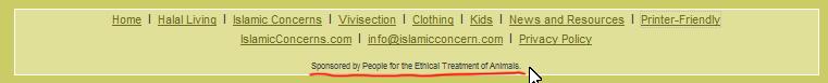 Screenshoot http://www.islamicconcern.com/