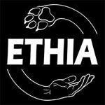 ETHIA – kein Vertrauen zu Simon Fischer