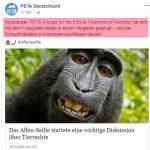 PeTA Lüge: Wunderbar Affen bekommen kein Geld