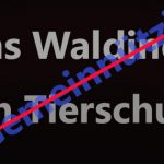 Jens Waldinger strikt GERATI ab