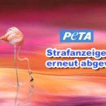 PeTA erleidet erneut Justiz Schlappe