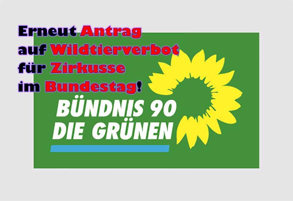 Bündnis 90 / Die Grünen stellen erneut Antrag auf Wildtierverbot für Zirkusse im Bundestag