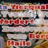 Peta-Tierquälerin Dr. Yvonne Würz fordert Tiger-Zuchtverbot vom Bergzoo Halle